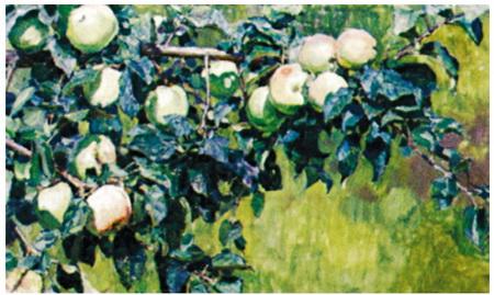 А. Васнецов. Ветка яблони